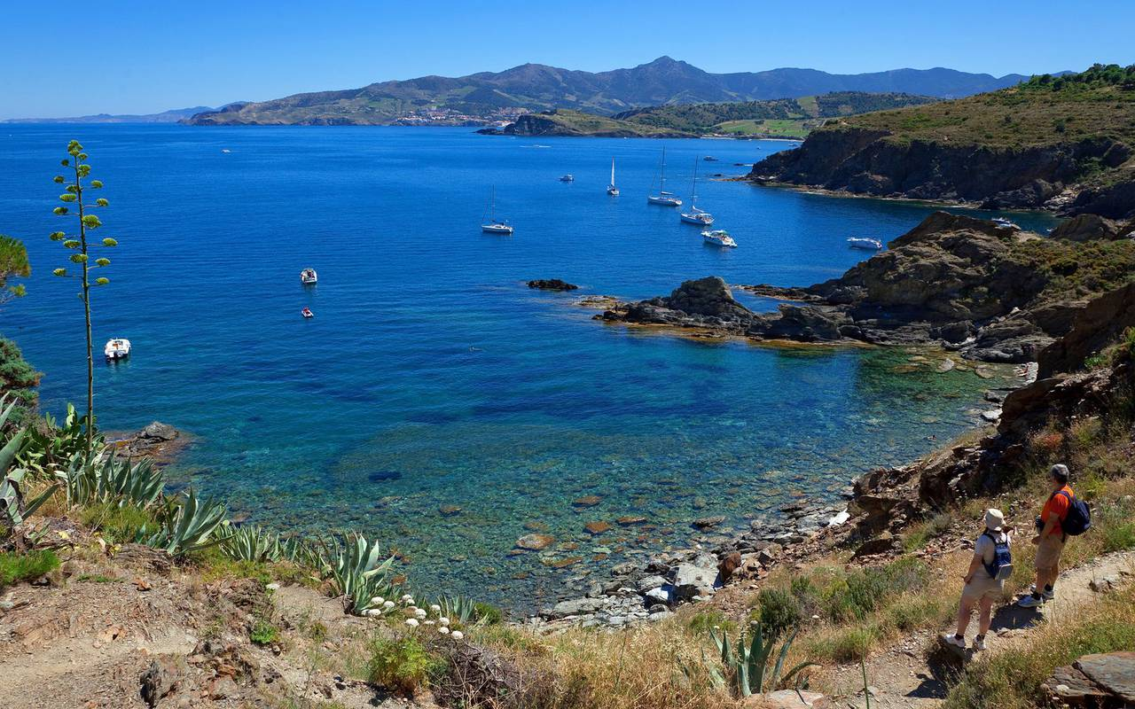 Sea view from the coastal path - things to do near perpignan