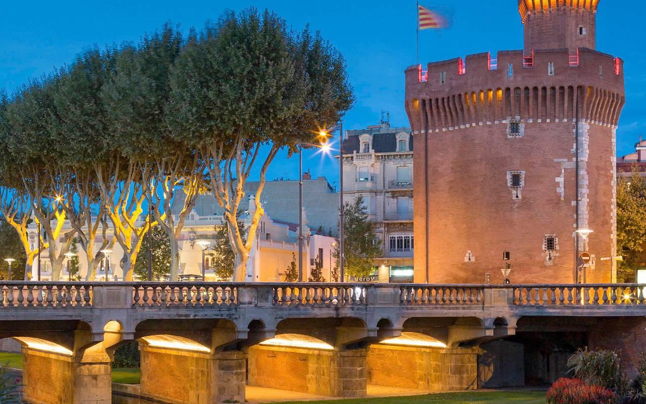Vue sur la centre ville de Perpignan - activité port vendres